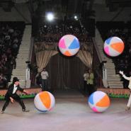 Новогоднее Шоу «ДЖАМБО» фотографии