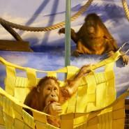 Лето в зоопарке «Лимпопо» фотографии