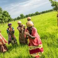 Выставка «Сенегал — страна Теранги» фотографии