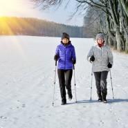 Занятия скандинавской ходьбой 2021 фотографии