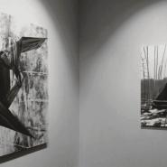 Выставка «Встреча с самим собой» фотографии