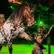 Шоу «Королевский цирк Гии Эрадзе» в Нижнем Новгороде фотографии