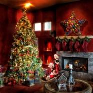 Выставка «Свет Рождественской звезды» фотографии