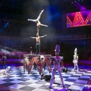 Цирковая программа «Баронеты» фотографии