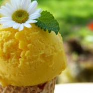 Первый городской «Фестиваль мороженого» 2018 фотографии