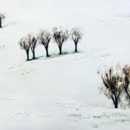 Выставка «Расширяя пространство зимы» фотографии