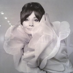 Выставка Джана Паоло Барбьери «Мода и вымысел»