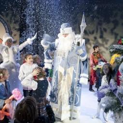 Новогоднее сказочное шоу «Кто родился в новый год» 2019