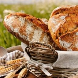 Арт-фестиваль «Хлеба край»