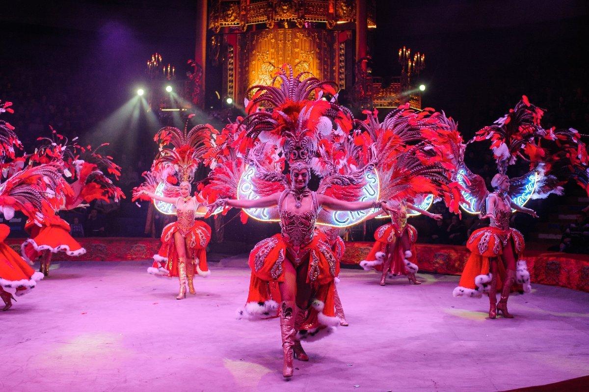 Шоу «Королевский цирк Гии Эрадзе» вНижнем Новгороде