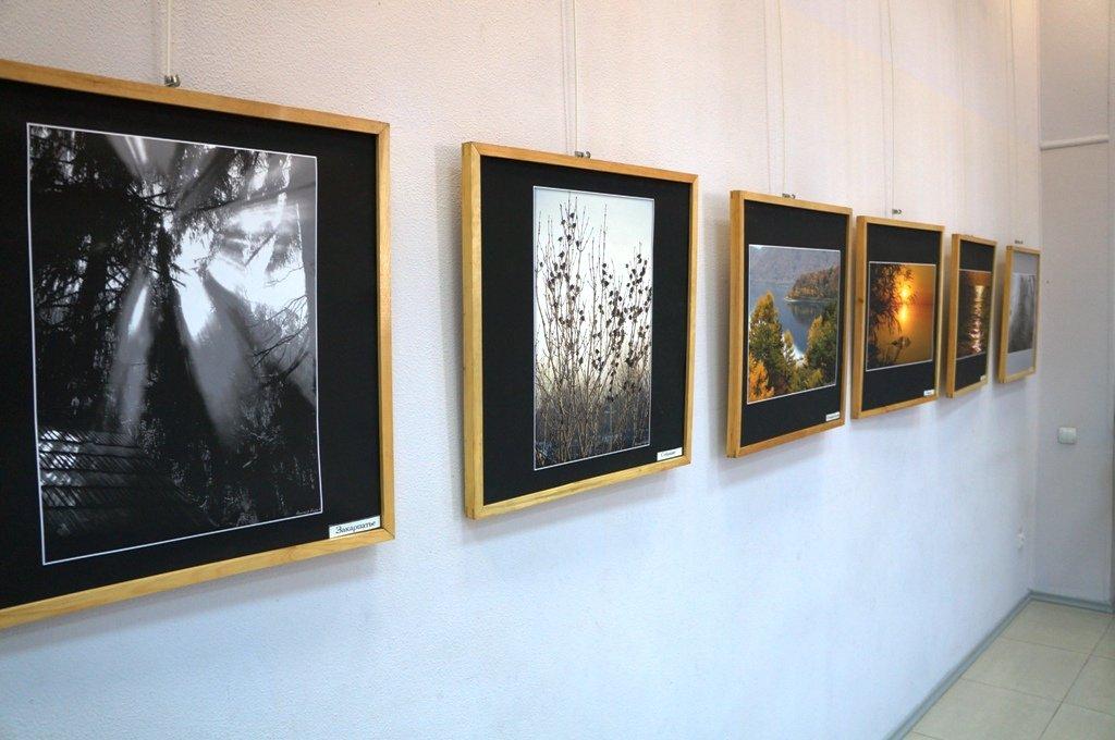 Выставка «Мир вокруг нас»